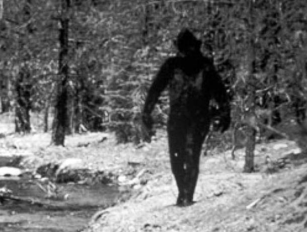 Bigfoot Historical Unsolved Mysteries