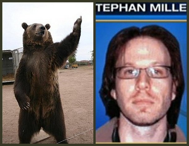 Stephan Miller Worst Animal Attacks