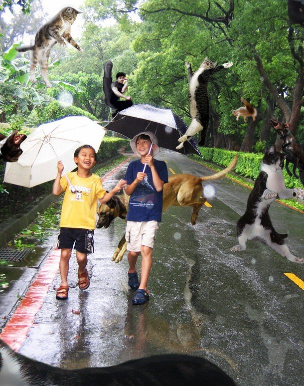 Raining cats and dogs idiom examples for kids