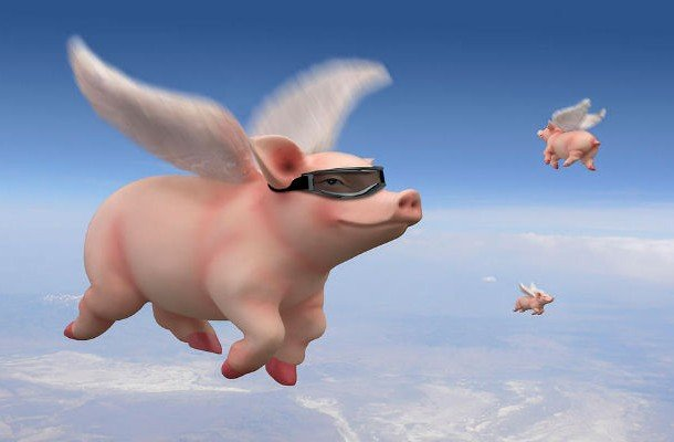 When pigs fly idioms and proverbs