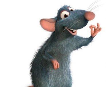 Happy as a rat
